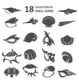 Collection of shell icons vector image vector image