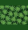 marijuana leafs or cannabis leafs weed vector image