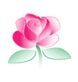 watercolor roses on a white background vector image vector image