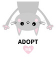 adopt me dont buy gray cat hanging upsidedown vector image