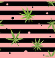cannabis seamless pattern with green marijuana vector image vector image