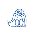monkey line icon concept monkey flat vector image vector image