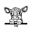 peeking calf - funny calf out - face head vector image vector image