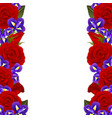 red rose and iris flower border vector image vector image