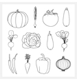 Set Linear Vegetable Icons vector image