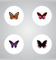 set of moth realistic symbols with hypolimnas vector image