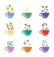 Tea Flavors Set vector image