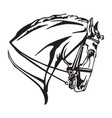 decorative portrait of andalusian horse vector image vector image