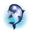 Dolphin cartoon against the background of the vector image vector image