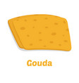 gouda cheese pieces cartoon flat style vector image vector image