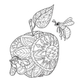 Honey apple doodle and bees vector image