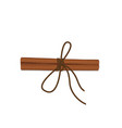 realistic cinnamon with a rope view from top vector image vector image