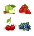 realistic fruit set juicy apple vector image