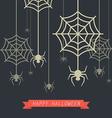 Happy Halloween Spider with Cobweb vector image