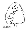 linden icon outline style vector image vector image