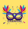 mask with feather carnival vector image vector image