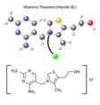 Thiamine chloride molecule - vitamin b1 vector image vector image
