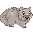Wombat animal cartoon vector image