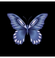 pearl Lace butterfly on black background vector image