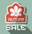 Autumn Sale Flat Design with Chestnut Leaf vector image