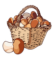 Basket with mushrooms vector image vector image