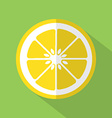 Flat Design Lemon Icon vector image