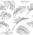hand drawn palm fronds pattern vector image