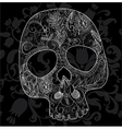 skull woven lace vector image vector image