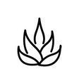 agave plant icon outline