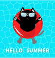 hello summer swimming pool water black cat vector image vector image