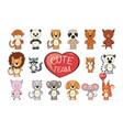 set of funny cartoon exotic cute animals vector image vector image