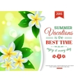 summer shining typographical background vector image vector image