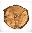 Tree stump round cut with annual rings vector image