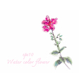 Water color flower on white background vector image