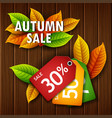autumn leaves sale tag on wooden background vector image