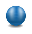 gym ball in blue design with shadow vector image vector image
