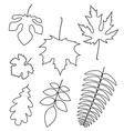 Leaf Outline vector image vector image