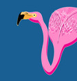 portrait pink flamingos vector image vector image