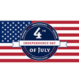 Symbol American Independence Day celebration flag vector image vector image