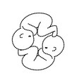 dotted shape nice babies twins with umbilical cord vector image vector image