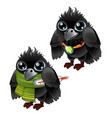healthy and diseased jackdaw isolated on white vector image vector image