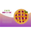 homemade berries pies and cakes sweet baking vector image vector image