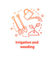 irrigation and weeding concept icon vector image