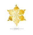 luxury golden star on white background vector image vector image