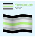 Agender pride flag with correct color scheme both vector image vector image