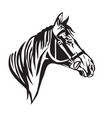 decorative portrait of horse in profile 2 vector image vector image