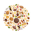 nuts background various nuts in circle form vector image
