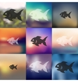 fish icon on blurred background vector image