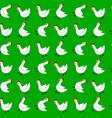 white chicken seamless pattern vector image