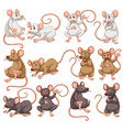 Mouse with different fur color vector image